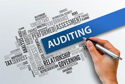 Audit Firms in India